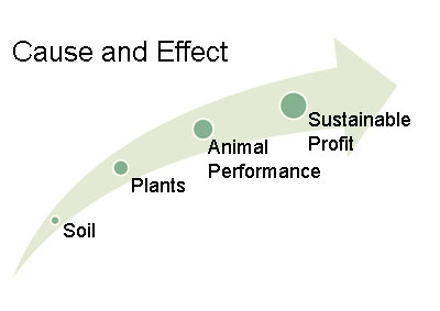 It is important to see cause and effect as we look at the steps that culminate with sustainable profit.
