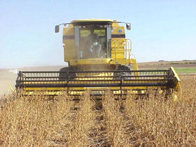 Breaking soybean yield barriers.