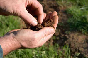 accuracy of a soil test